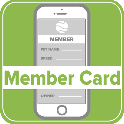 Pet Microchip Member Card